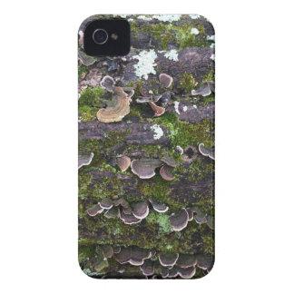 mossy mushroom fun iPhone 4 cover