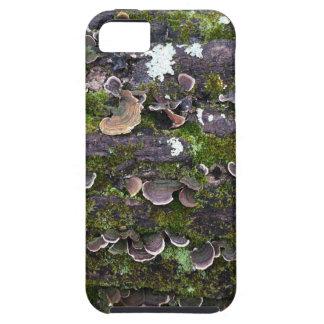 mossy mushroom fun iPhone 5 cases
