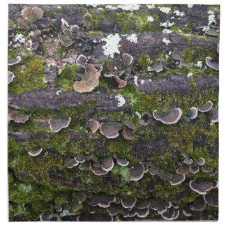 mossy mushroom fun napkin