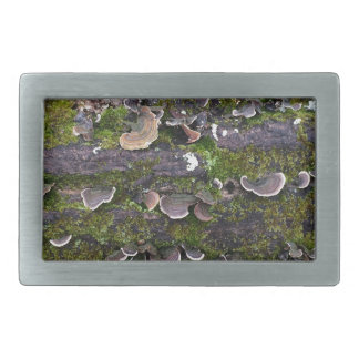 mossy mushroom fun rectangular belt buckle