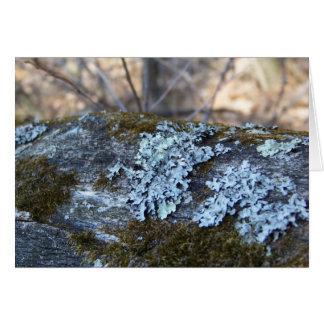 Mossy Oak Log Greeting Card
