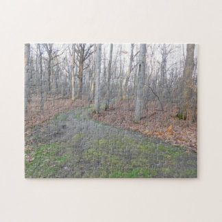 Mossy Path Through the Woods Jigsaw Puzzle
