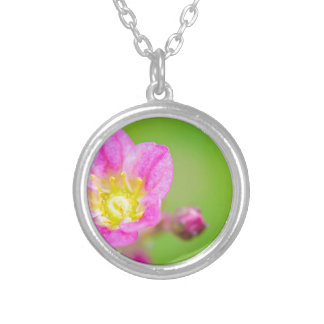 Mossy Saxifrage or rockfoil flowers macro view Silver Plated Necklace