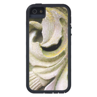 Mossy Stone Leaves iPhone 5 Cases