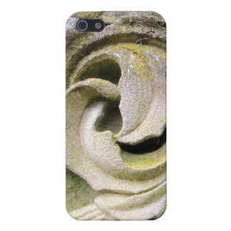 Mossy Stone Leaves iPhone 5 Cover