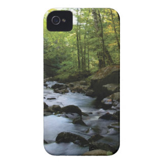 mossy stream in the forest iPhone 4 case