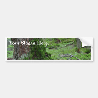 Mossy Trees Forests Woods Bumper Stickers