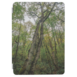 Mossy Trees in Pacific Northwest iPad Air Cover