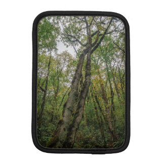 Mossy Trees in Pacific Northwest iPad Mini Sleeve