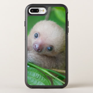 Most Famous Baby Sloth Photo - as a phone case