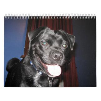Mostly Bo Calendar