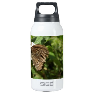 Moth 0.3L Insulated SIGG Thermos Water Bottle