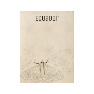 Moth and flower from Ecuador. Color me in. Wood Poster