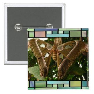 Moth Buttons