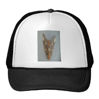 Moth Mesh Hat