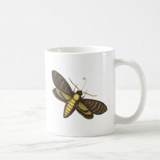 Moth moth mug