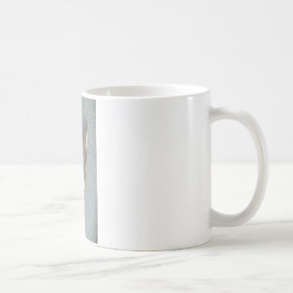 Moth Mugs