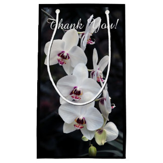 Moth Orchid Flowers White and Red Small Gift Bag