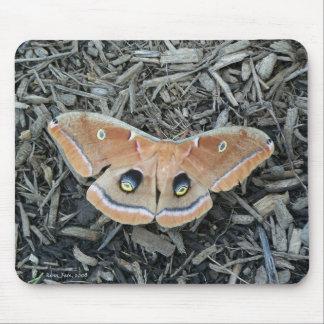 Moth Pad Mouse Pad