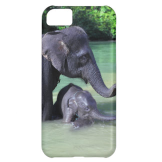 Mother and baby elephant in river iPhone 5C case