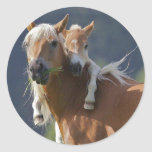 Mother and Baby Horse Sticker
