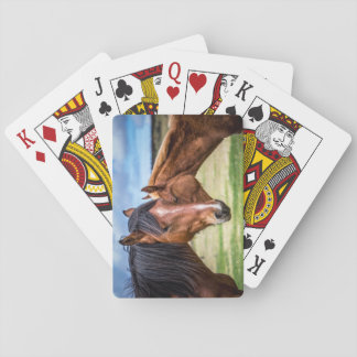 Mother and son playing cards