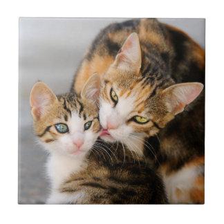Mother Cat Loves Cute Kitten, Ceramic Small Square Tile
