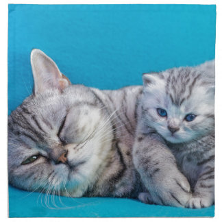 Mother cat lying with kitten on blue garments napkin