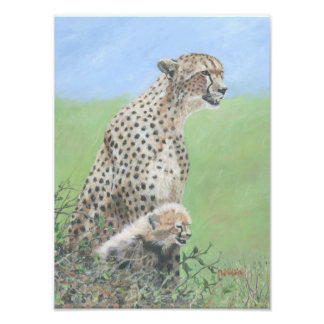 Mother Cheetah with cub Photo Print