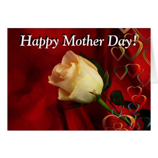 Mother day greeting, white rose on red background cards