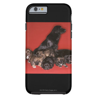 Mother dog with puppies tough iPhone 6 case