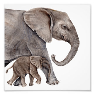 Mother Elephant with Baby Elephant Photo Art Print