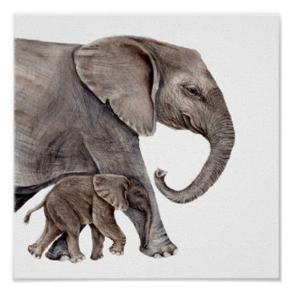 Mother Elephant with Baby Elephant Poster