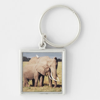 Mother elephant with young Silver-Colored square key ring