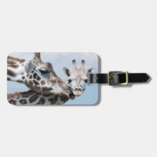 Mother giraffe kisses her calf luggage tag