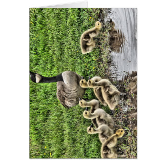 Mother Goose Card
