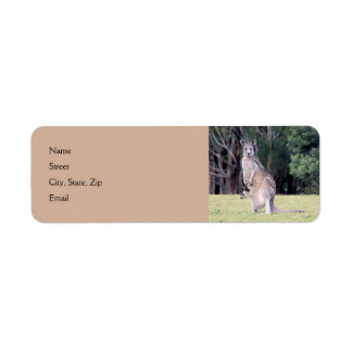 Mother Kangaroo with Baby Joey in Her Pouch Return Address Label