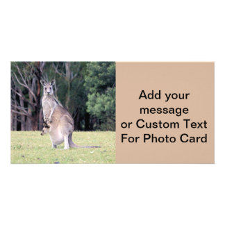 Mother Kangaroo with Baby Joey in Her Pouch Customized Photo Card