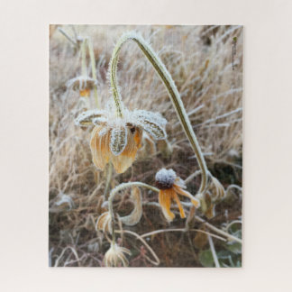 Mother Nature Touched Frosty Rudbeckia Flowers Jigsaw Puzzle
