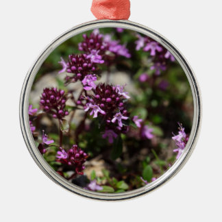 Mother of thyme flowers (Thymus praecox) Metal Ornament