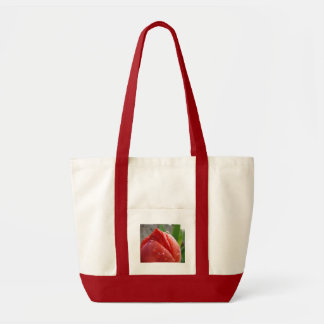 MOTHER'S DAY GIFTS 16 RED TULIPS Tote Bags Mothers