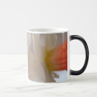MOTHER'S DAY MUGS GIFTS 4 NARCISSUS Flowers
