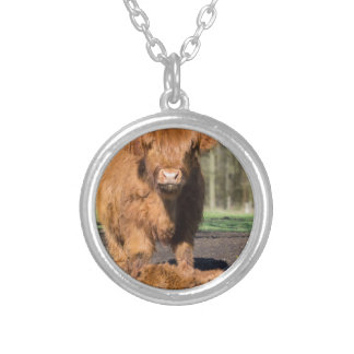 Mother scottish highlander cow near newborn calf silver plated necklace