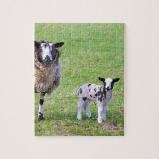 Mother sheep with two newborn lambs in spring jigsaw puzzle