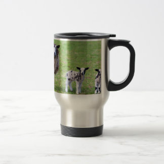 Mother sheep with two newborn lambs in spring travel mug