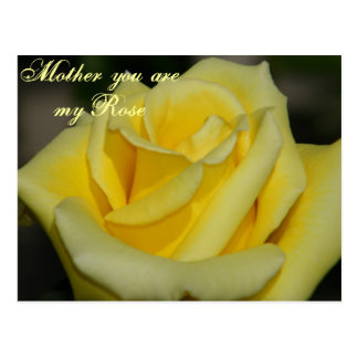 Mother You are my Rose/Any Occasion_ Postcard Post Cards