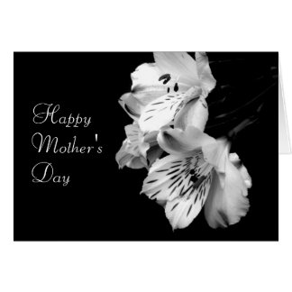 Mother's Day Black and White Lily Greeting Card