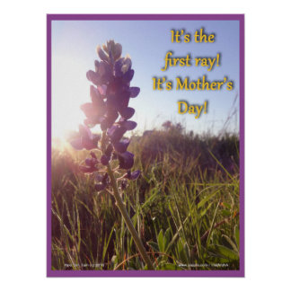 Mother's Day Blue Bonnets Poster