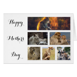 Mother's Day Card - collage of photos of animals