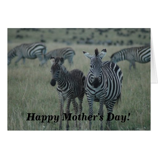 Mother's Day Card-On the Wild Side